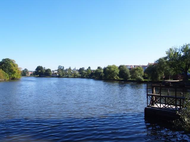 広場に隣接する池